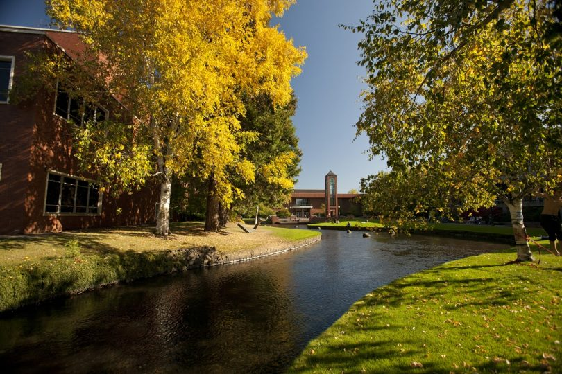 A view of the stream that runs through the Willamette University campus