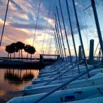 Sailboats lined up along an Eckerd College dock