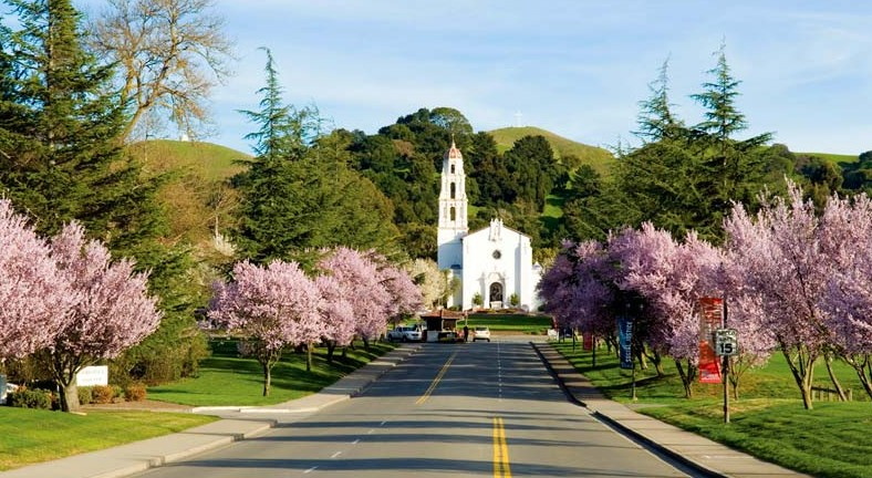A view of the Saint Mary's College campus in the spring